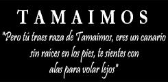 Tamaimos