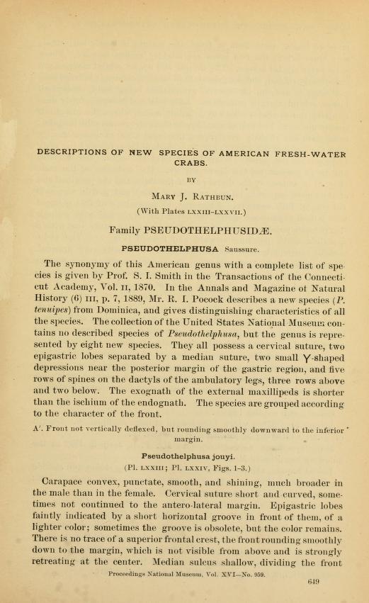 Descriptions of New Species of American Fresh-Water Crabs