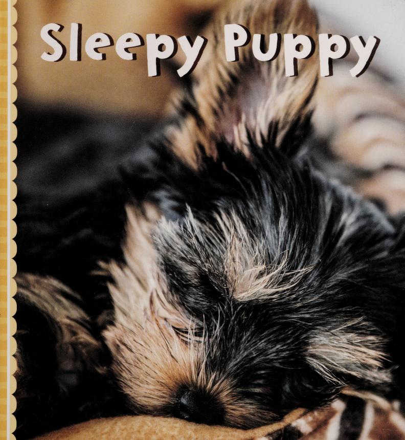 Sleepy puppy by